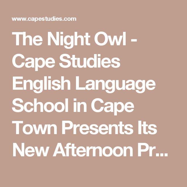 The Night Owl - Cape Studies English Language School in Cape Town Presents Its New Afternoon Programme | Cape Studies