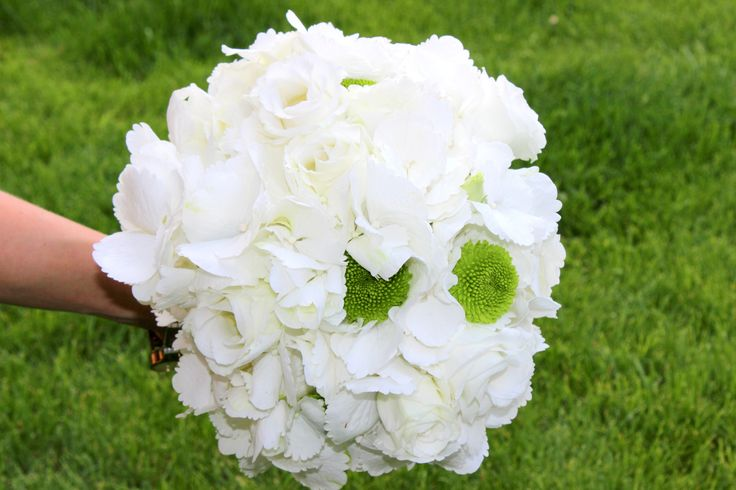 White hydragea bouquet