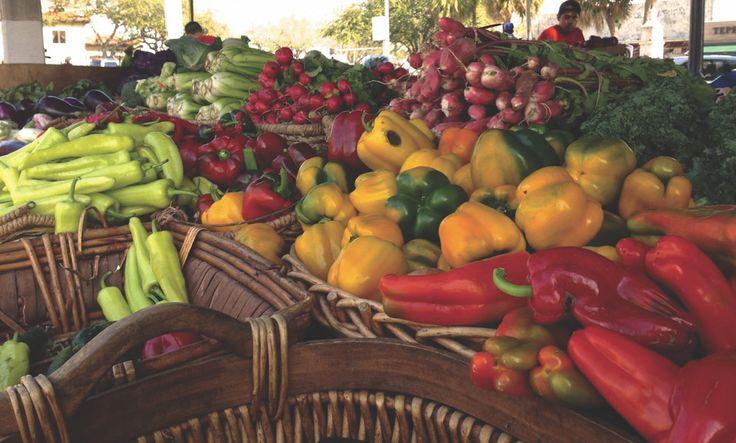 Edmonton Farmers' Market Guide