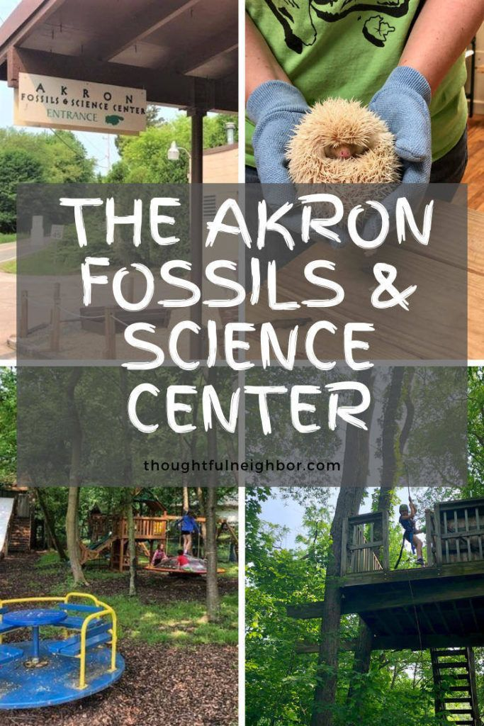 A Visit To The Akron Fossils Science Center Ohio Travel
