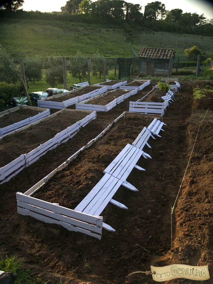 #ortiurbani #vegetablegarden #orto #green #bio