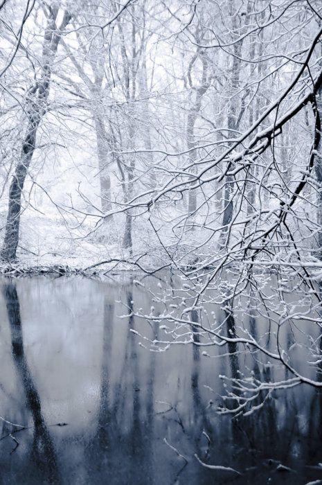 winter wonderland 2 by Alesana-x-Fan