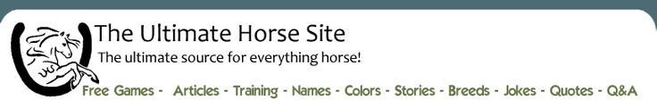 Ultimate Horse Site. Horse Information, Articles, and Horse Games.