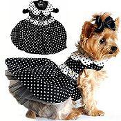 Black & White Polka Dot Dog Harness Dress