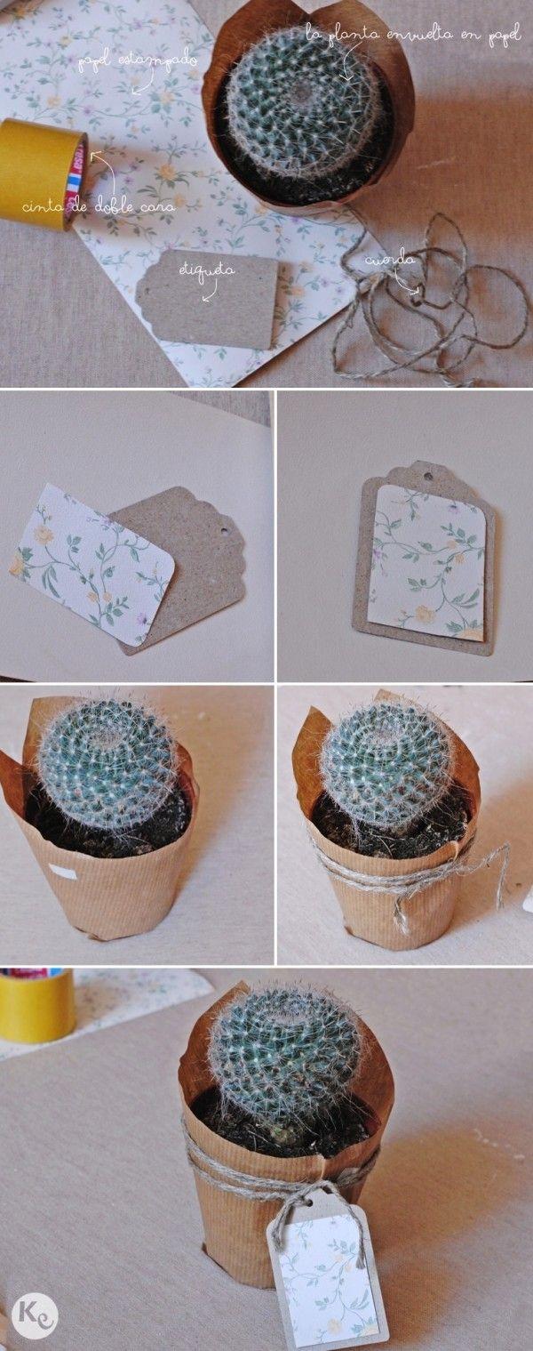 DIY. Plants as wedding favors