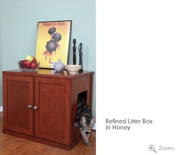 Cat Litter Box And Food Placement Ideas