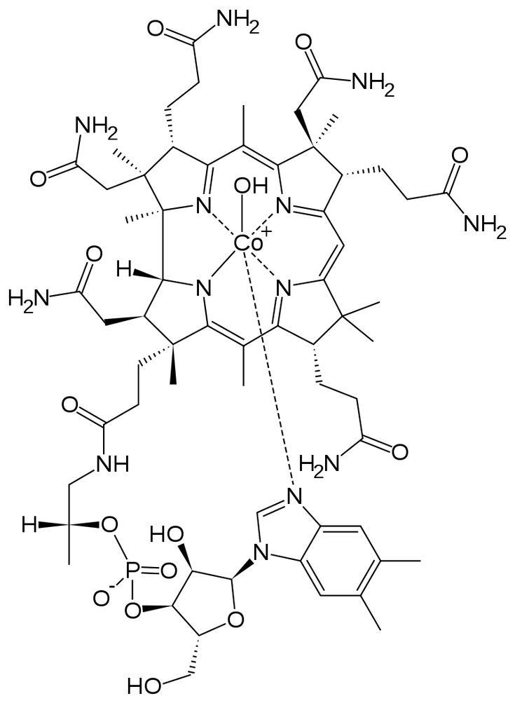 Vitamín B12 patří mezi vitamíny B, do tzv. B-komplexu. Je rozpustný ve vodě a hraje velkou roli při krvetvorbě. Díky němu mají naše červené krvinky správnou velikost a umí předávat kyslík dalším buňkám. Stejně...