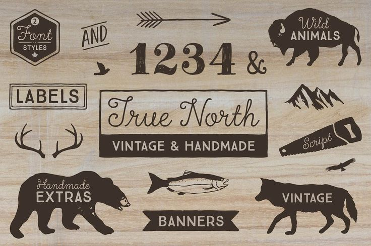 True North Font Pack by Cultivated Mind on @creativemarket