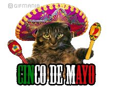 Cinco De Mayo Animated GIFs | Mexico Day (Cinco de Mayo)