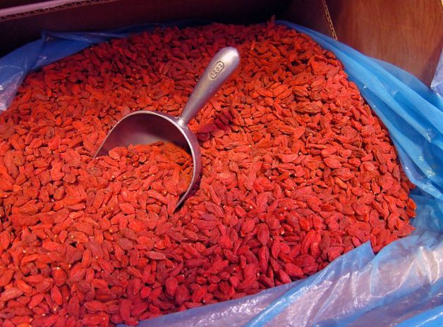 how to grow goji plants from seed