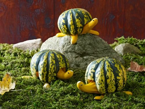 65 of the most creative pumpkin carving ideas - Funny Halloween Pumpkin Carvings
