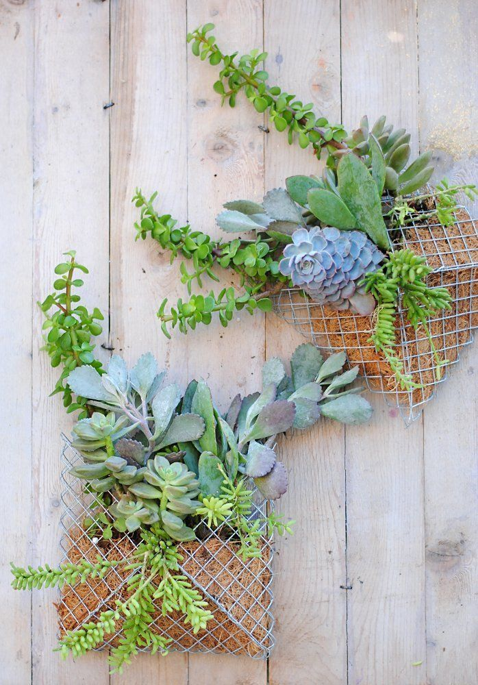 Easy DIY Project:  How to Make a Pocket Wall Planter  — Apartment Therapy Reader Project Tutorials