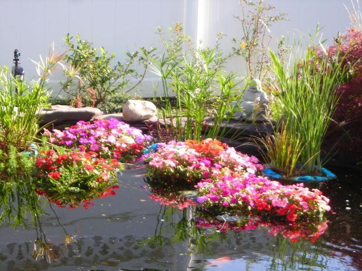 Best 25 pond landscaping ideas on pinterest ponds pond for Floating plant pots
