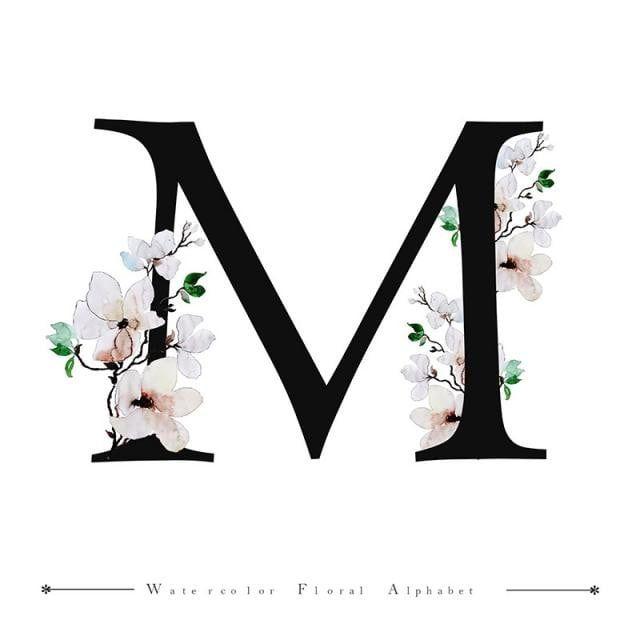 M Alfabeto Letra Aquarela Floral Fundo M Clipart Aguarela Cor Imagem Png E Vetor Para Download Gratuito Lettering Alphabet Picture Letters Lettering Alphabet Fonts