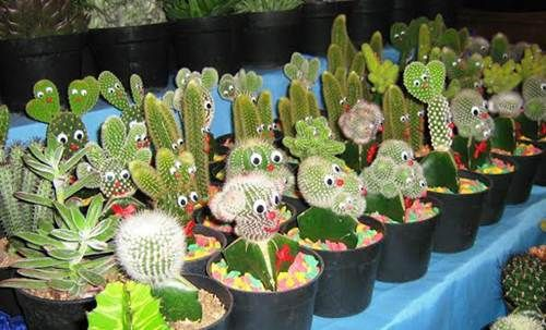 Cara Menanam Kaktus Hias Yang Benar - http://caramenanam.net/cara-menanam-kaktus-hias/