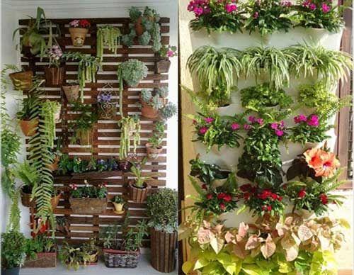 Вертикальный сад. Зеленая стена. Живая стена