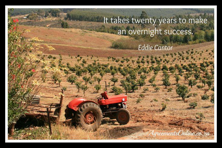 The overnight success