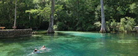 Ponce De Leon, Florida. We used to swim here at the springs and the water NEVER gets warm even with the heat! BEST place to be in August!
