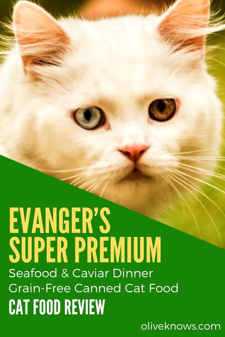 Evanger S Super Premium Seafood Caviar Dinner Grain Free Canned Cat Food Review Oliveknows Cat Food Reviews Canned Cat Food Free Cat Food
