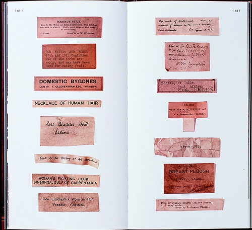 Collection of old exhibit labels that have become detached from the objects they once recorded.