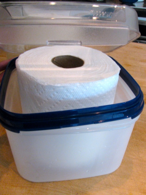 DIY Bath Wipes 3 qt. container 1/2 roll Bounty paper