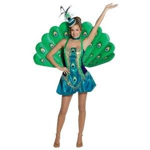 Google Image Result for http://snipsly.com/wp-content/uploads/2010/07/peacock-costume.jpg