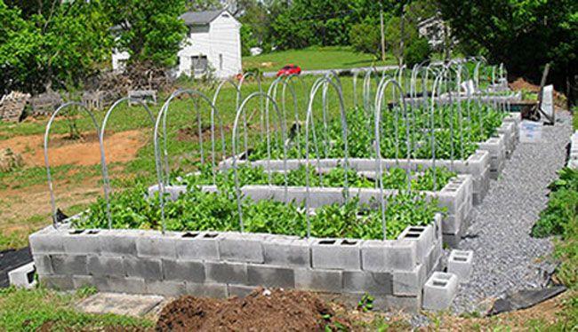le thème Jardin Surélevé sur Pinterest  Comment faire un jardin ...