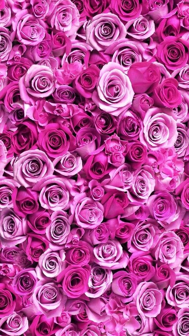 Wallpaper With Images Purple Flowers Wallpaper Flower