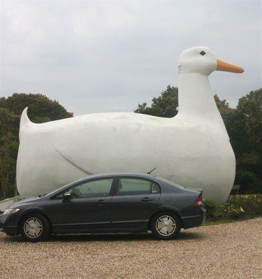 "The Big Duck, Long Island: Long Island's Favorite ""Big Bird,"" The Big Duck"