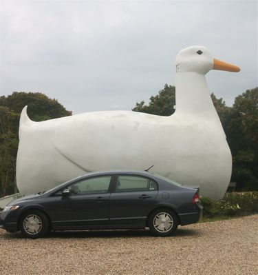 "The Big Duck, Long Island: Long Island's Favorite ""Big Bird,"" The Big Duck"