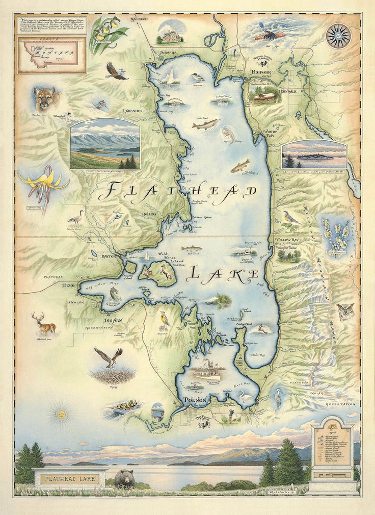 Hand-Drawn Map of Flathead Lake - Distinctly Montana - 1