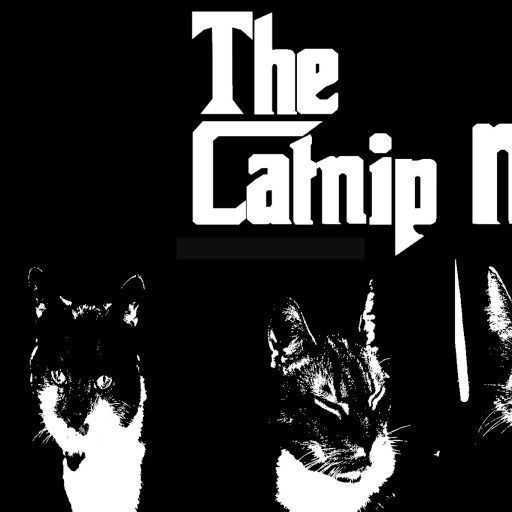 The Catnip Mafia Blog