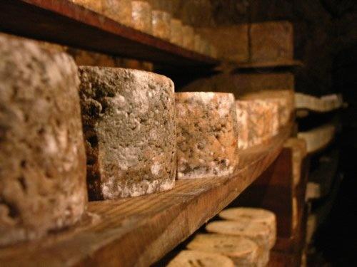 Quesu picon (cave cured blue cheese),   Cantabria   Spain