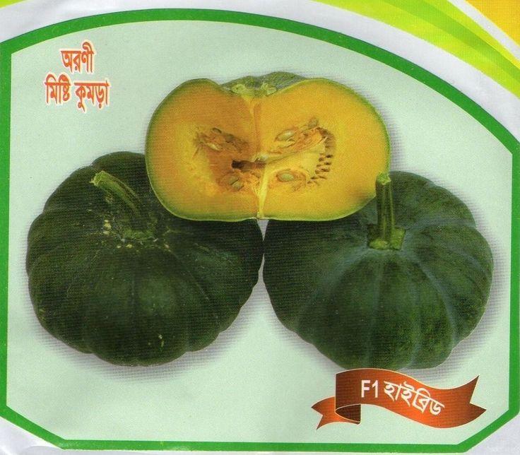 VEGETABLE SEEDS MISTI KUMRA KODU SEEDS/ASIAN SWEET PUMPKIN SEEDS/MITA KHODU BEEJ in Garden & Patio, Plants, Seeds & Bulbs, Seeds & Bulbs | eBay