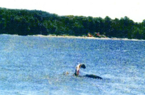 While the Loch Ness Monster generally gets most of the attention, just about every lake in the world has tales of its own serpent. Lake Champlain, a body of water that is similar in size to Loch Ness and borders Quebec, New York and Vermont is no different, but Champ (as it's affectionately called) has had a high number of sightings and supposed evidence that rivals her Scottish cousin.