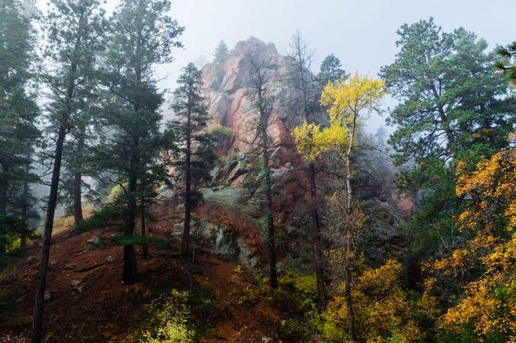 ***Foggy Day (North Cheyenne Canyon, Colorado) by Dale Poll / 500px