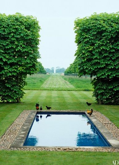 Chestnut hedges flank a tranquil stone-lined pool at the Grove, the Oxfordshire, England, estate of the legendary David Hicks. The chickens are newer additions; they belong to Hicks's son, Ashley, also a designer, who now lives there with his wife, Kata.