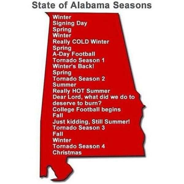 Best Alabama Stuff Images On Pinterest Cocktails States - State stereotypes alabama