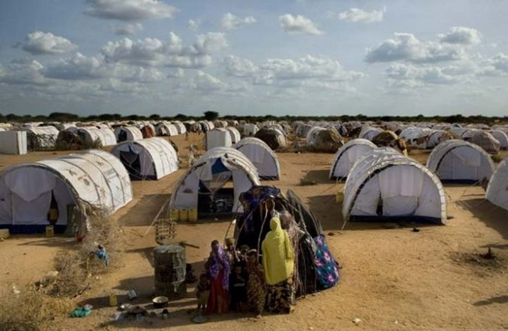 According to the UN Refugee Agency, there are approximately 45.2 million people around the world who have been forcibly displaced from their homes. Of this s...