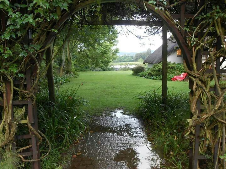 A walkway through the mist at Rawdons Hotel, Midlands Meander, KZN, South Africa. Visit www.midlandsmeander.co.za