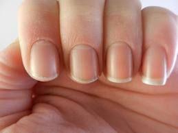 naturliga naglar - Sök på Google
