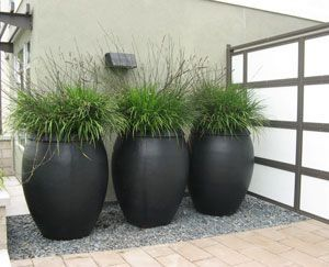 Big pots of grass. . .surely we could do this
