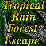 Tropical Rain Forest Escape