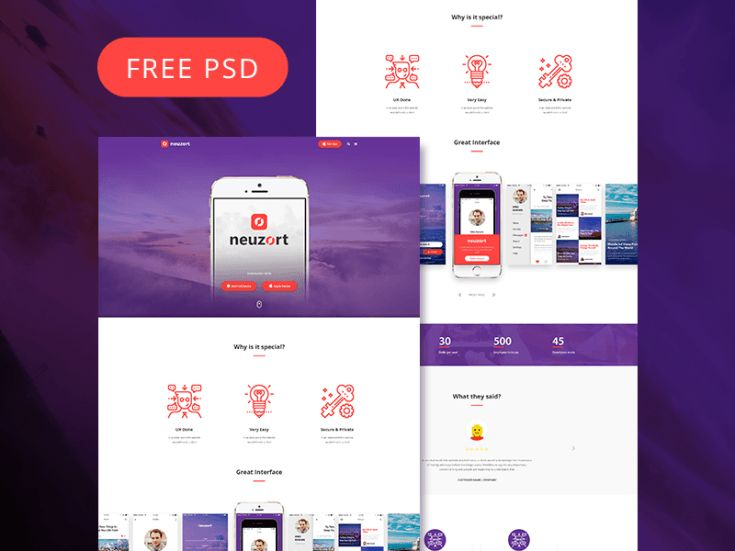 Neuzort Landing Page PSD Template