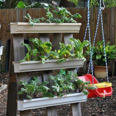 Planter Made From A Stand With Gutters For Planting I