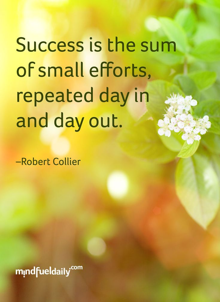"Never Give Up – 5 Quotes On Tenacity To Push You Further - ""Success is the sum of small efforts, repeated day in and day out."" – Robert Collier"