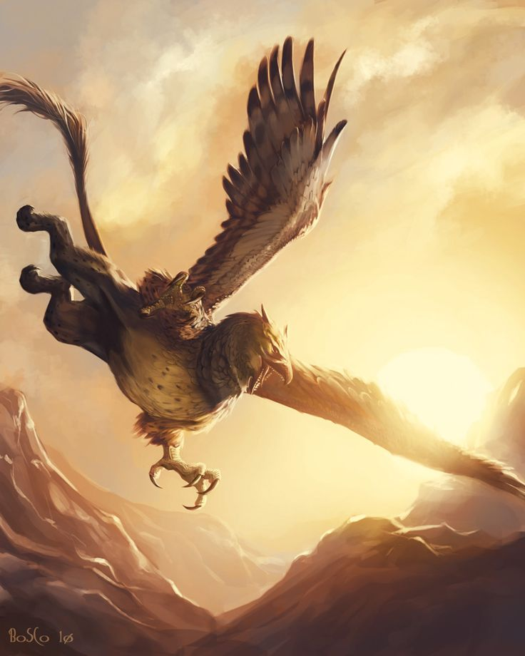 Gryphons most commonly build their eyries in the crags of the northern mountains, but their range is so wide that they can often be seen hunting as far west as FairaNoran.