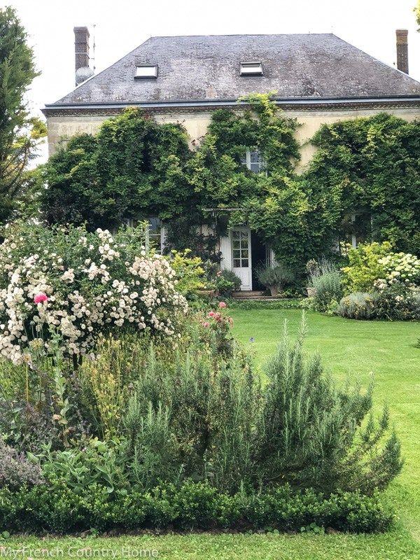 my garden parterres- an update | gardens | French country