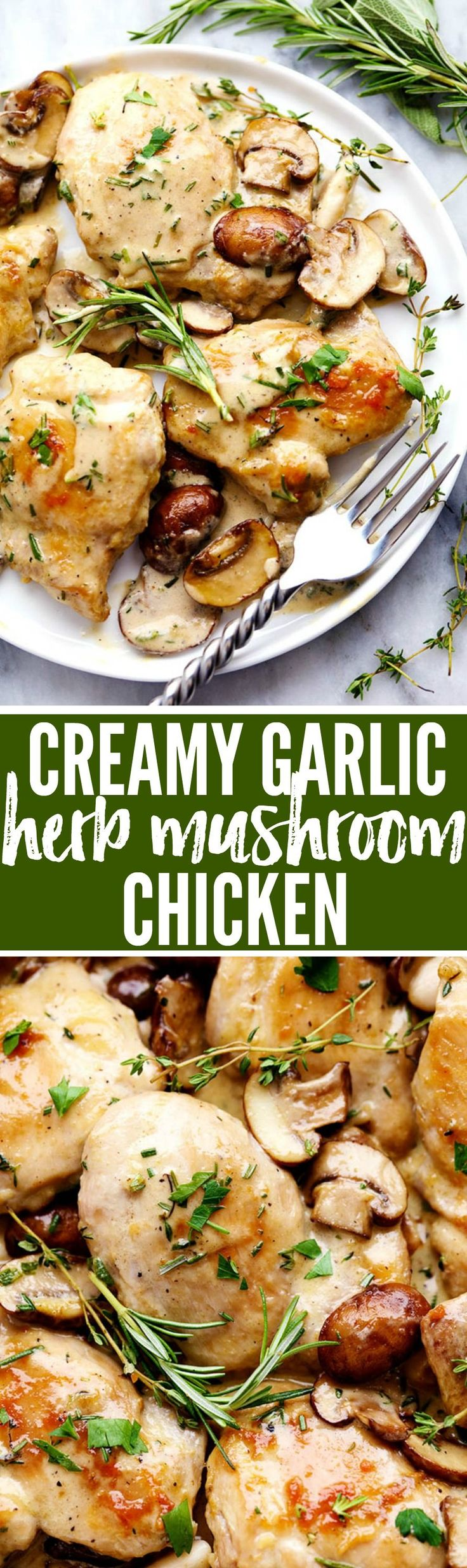 Creamy Garlic Herb Mushroom Chicken is a quick and easy 30 minute meal with amazing restaurant quality taste! The creamy garlic and fresh herb mushroom sauce over this chicken is insanely delicious!