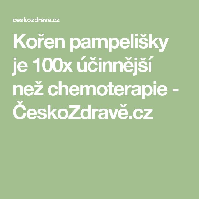 Kořen pampelišky je 100x účinnější než chemoterapie - ČeskoZdravě.cz